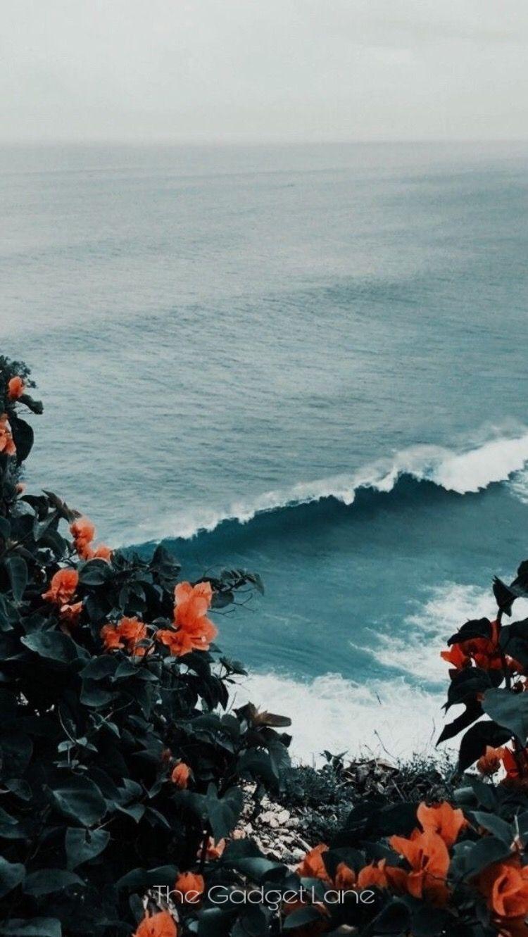 Beach Wallpaper Aesthetic 640x1136 Download Hd Wallpaper Wallpapertip