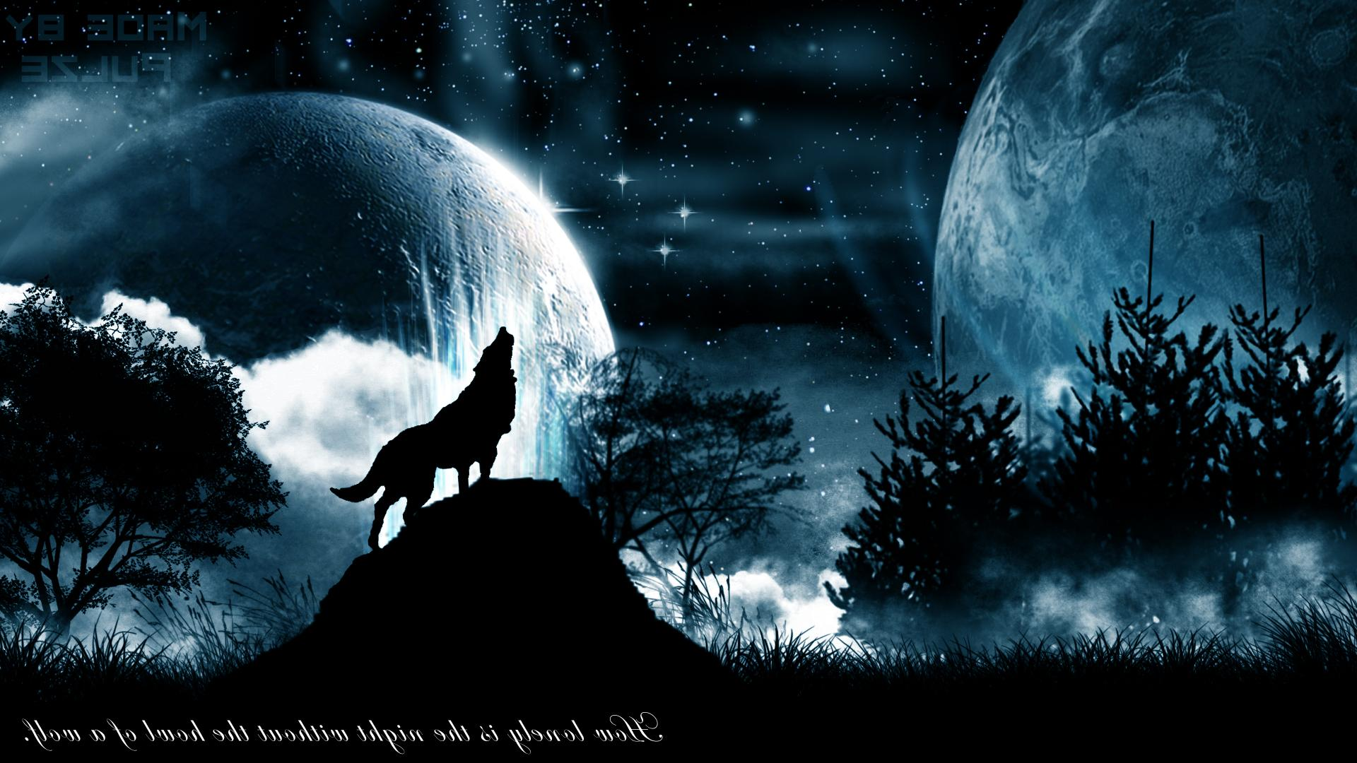 Blue And Black Wolf Black Wolf Howling At The Moon 1920x1080 Download Hd Wallpaper Wallpapertip