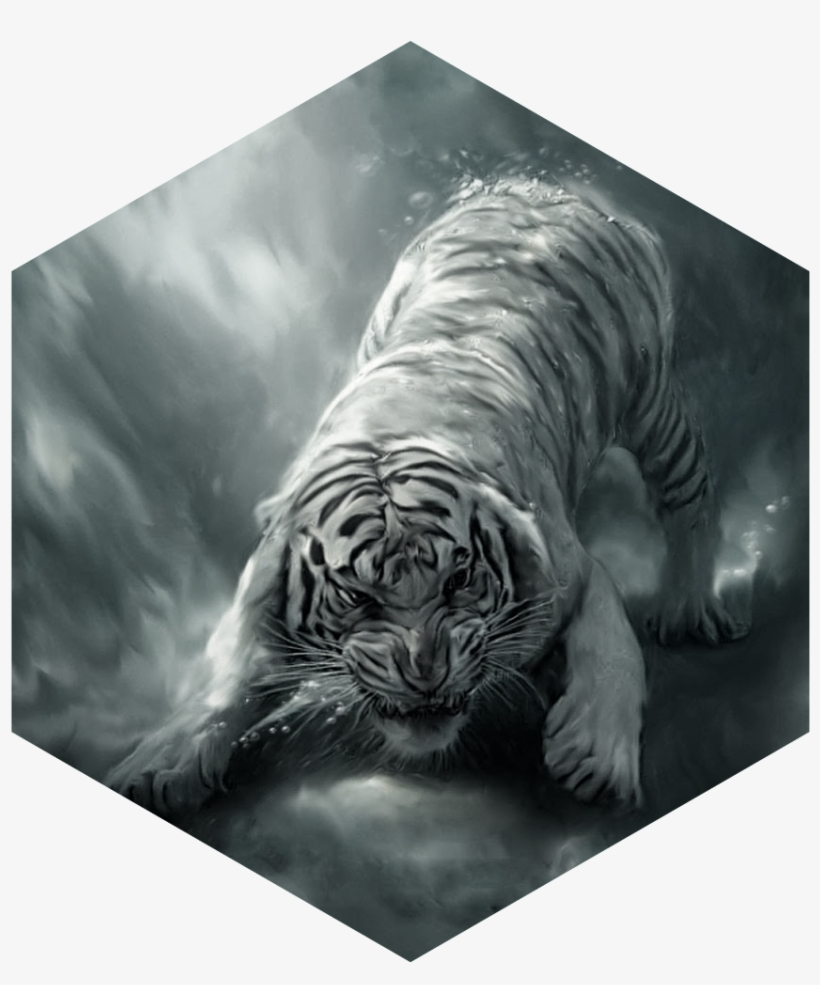 Painting White Tiger Angry Beautiful Bengal White Tiger 820x985 Download Hd Wallpaper Wallpapertip
