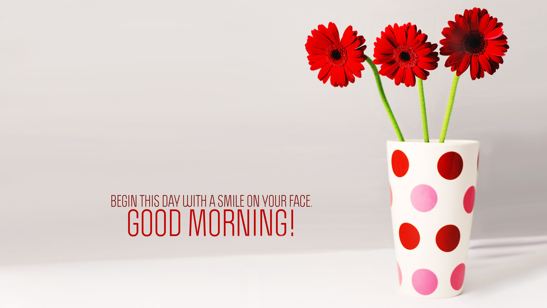 Good Morning Flowers Hd Wallpapers And Images Download May You Get Well Soon 1920x1080 Download Hd Wallpaper Wallpapertip