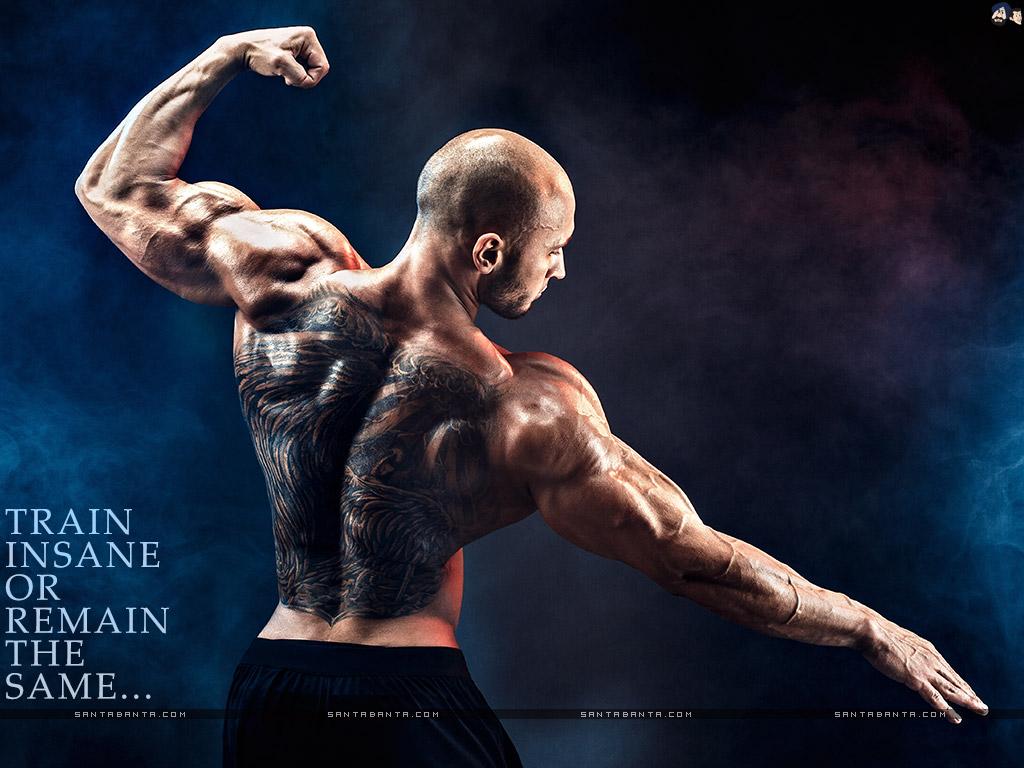Bodybuilding Bodybuilding 壁纸 1024x768 Download Hd Wallpaper Wallpapertip