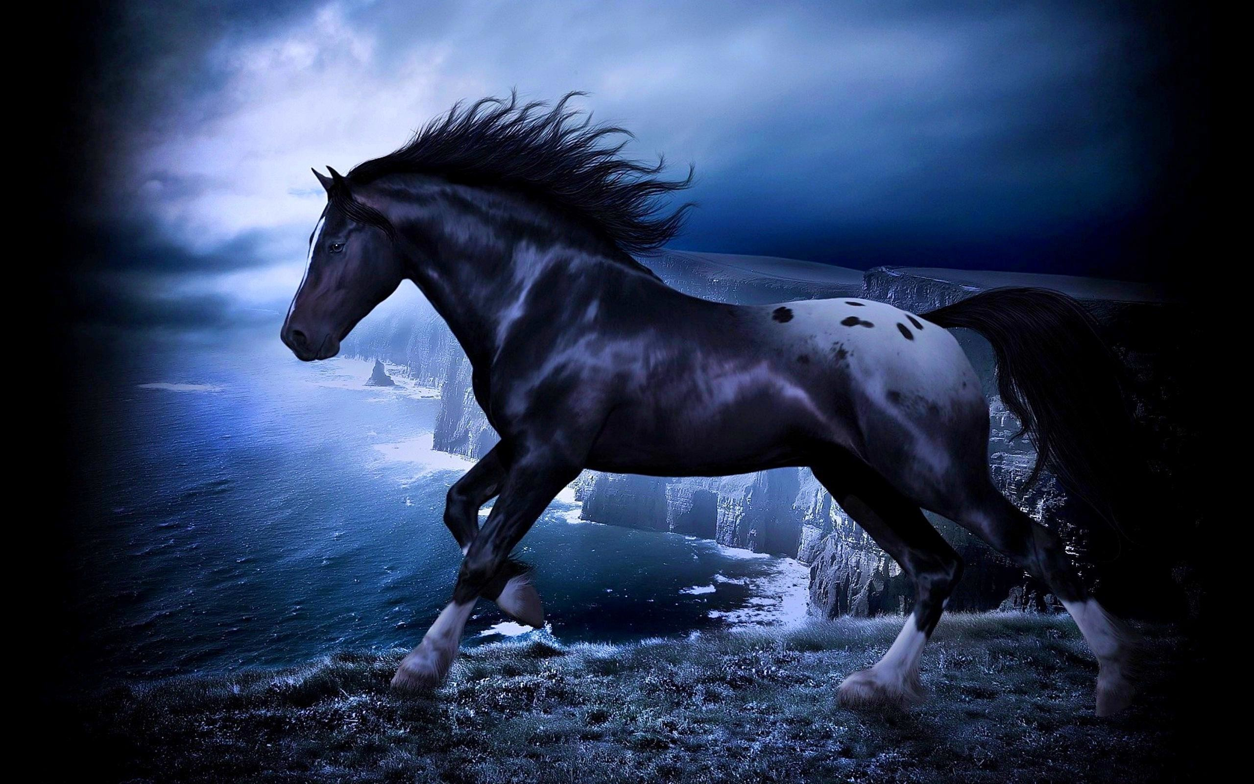 Download Fantasy Horse In The Dark Wallpaper Apps Black And Blue Horse 1920x1080 Download Hd Wallpaper Wallpapertip