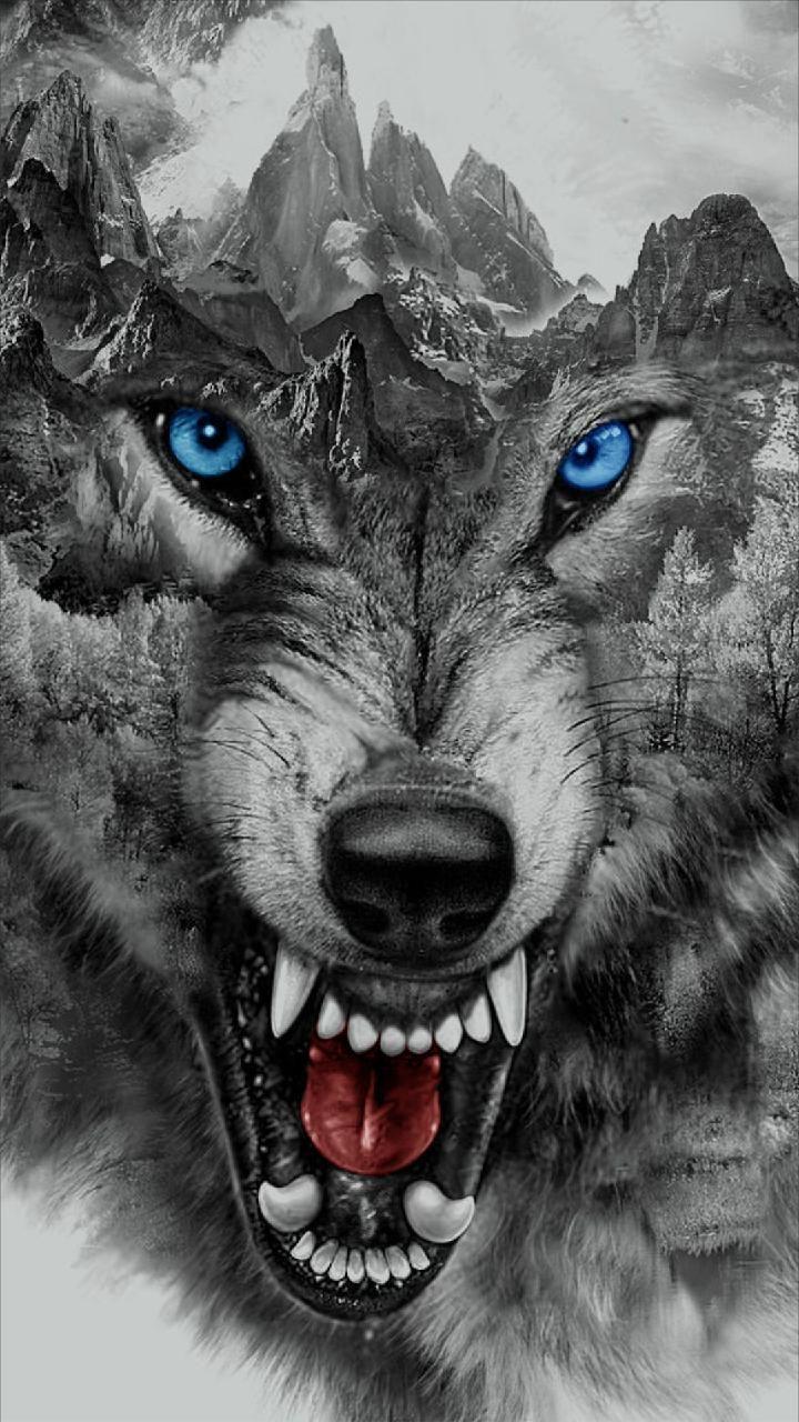 42 427243 4k ultra hd wolf wallpaper 4k