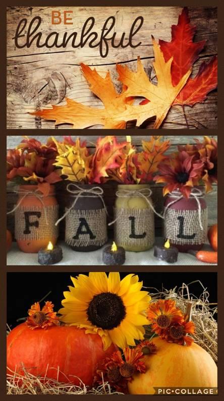 Free Fall Wallpaper For Cell Phones 444x794 Download Hd Wallpaper Wallpapertip