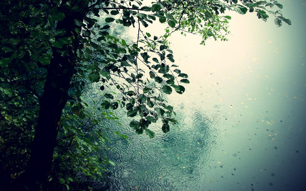 Hd Wallpapers For Pc Rain