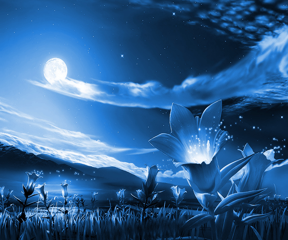 Night Night Beautiful Pictures Of Nature 960x800 Download Hd Wallpaper Wallpapertip