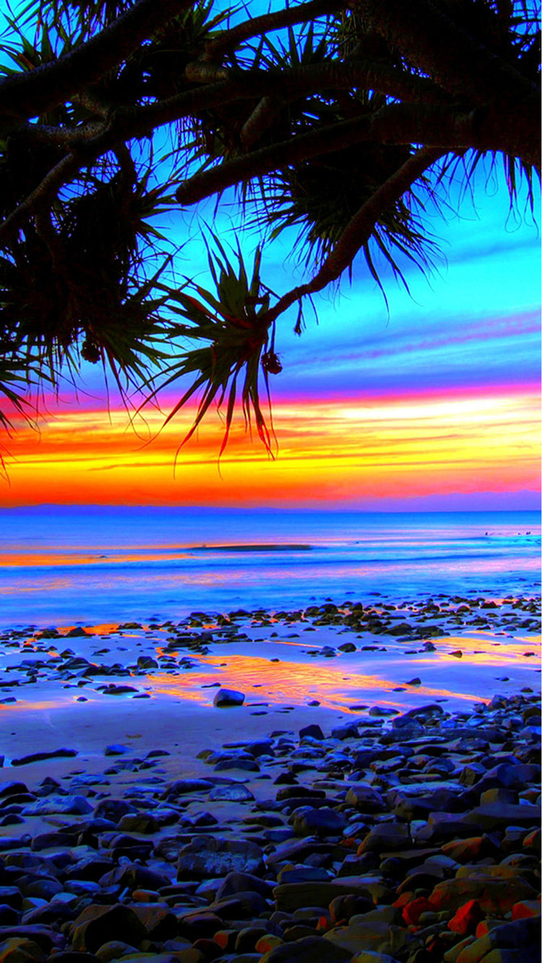 Iphoneのビーチの背景 トロピカル壁紙hd 450x800 Wallpapertip