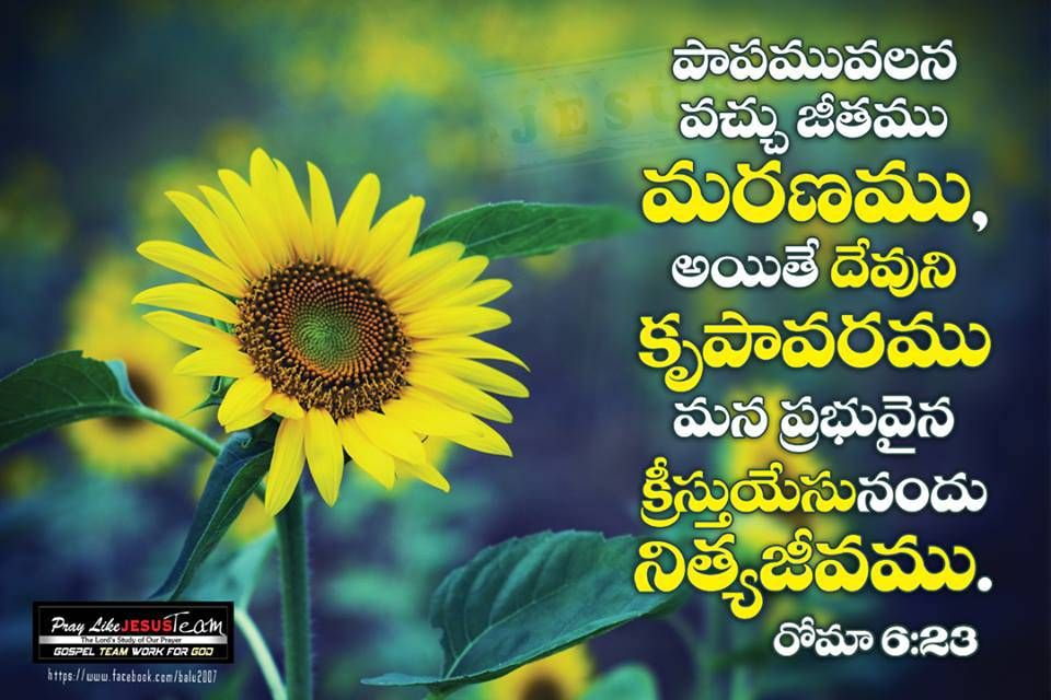 Bible Verses In Telugu 960x640 Download Hd Wallpaper Wallpapertip