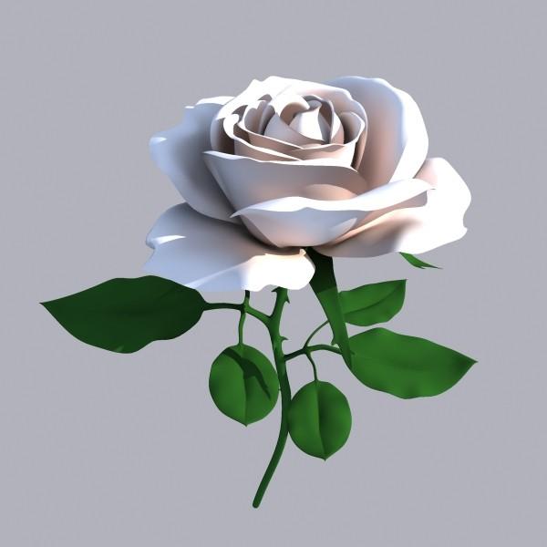 3d Rose Flowers Wallpapers Download Hd Wallpapers 2u Rose Flower 3d Model Free 600x600 Download Hd Wallpaper Wallpapertip
