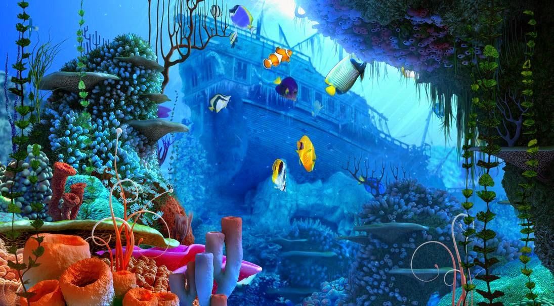Wallpaper Bawah Laut Pc 5d Wallpaper Hd 1095x606 Download Hd Wallpaper Wallpapertip