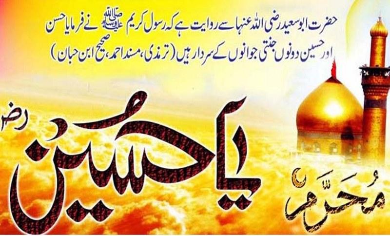 Muharram Hussain Wallpaper Yome Ashura 800x484 Download Hd Wallpaper Wallpapertip