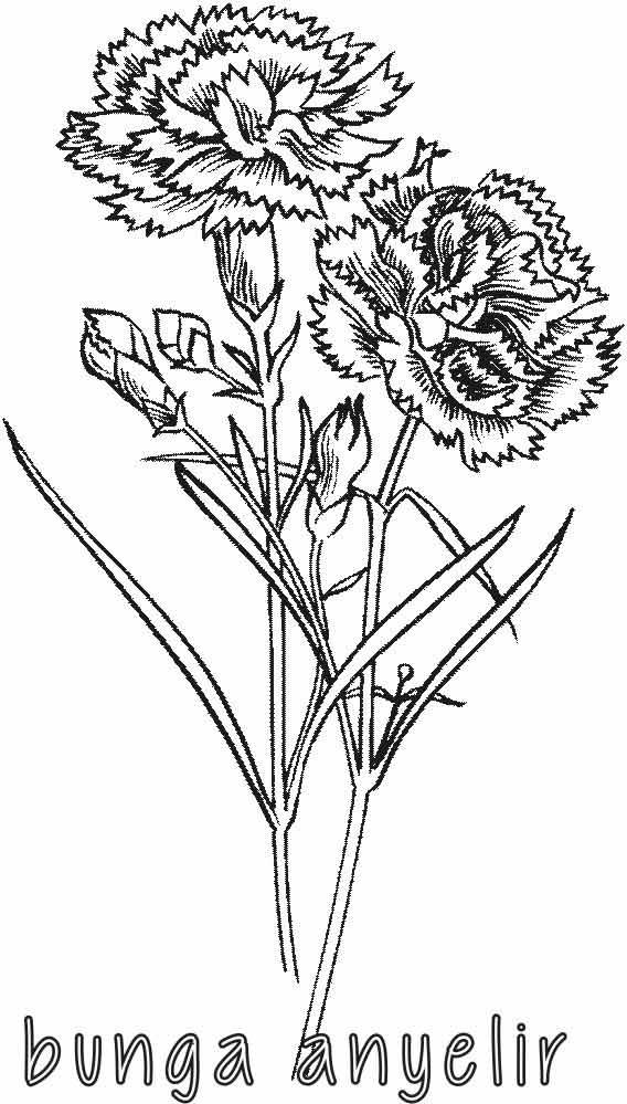 Kumpulan Mewarnai Gambar Bunga Indonesia Alamendah Hand Embroidery Flower Designs 568x999 Download Hd Wallpaper Wallpapertip