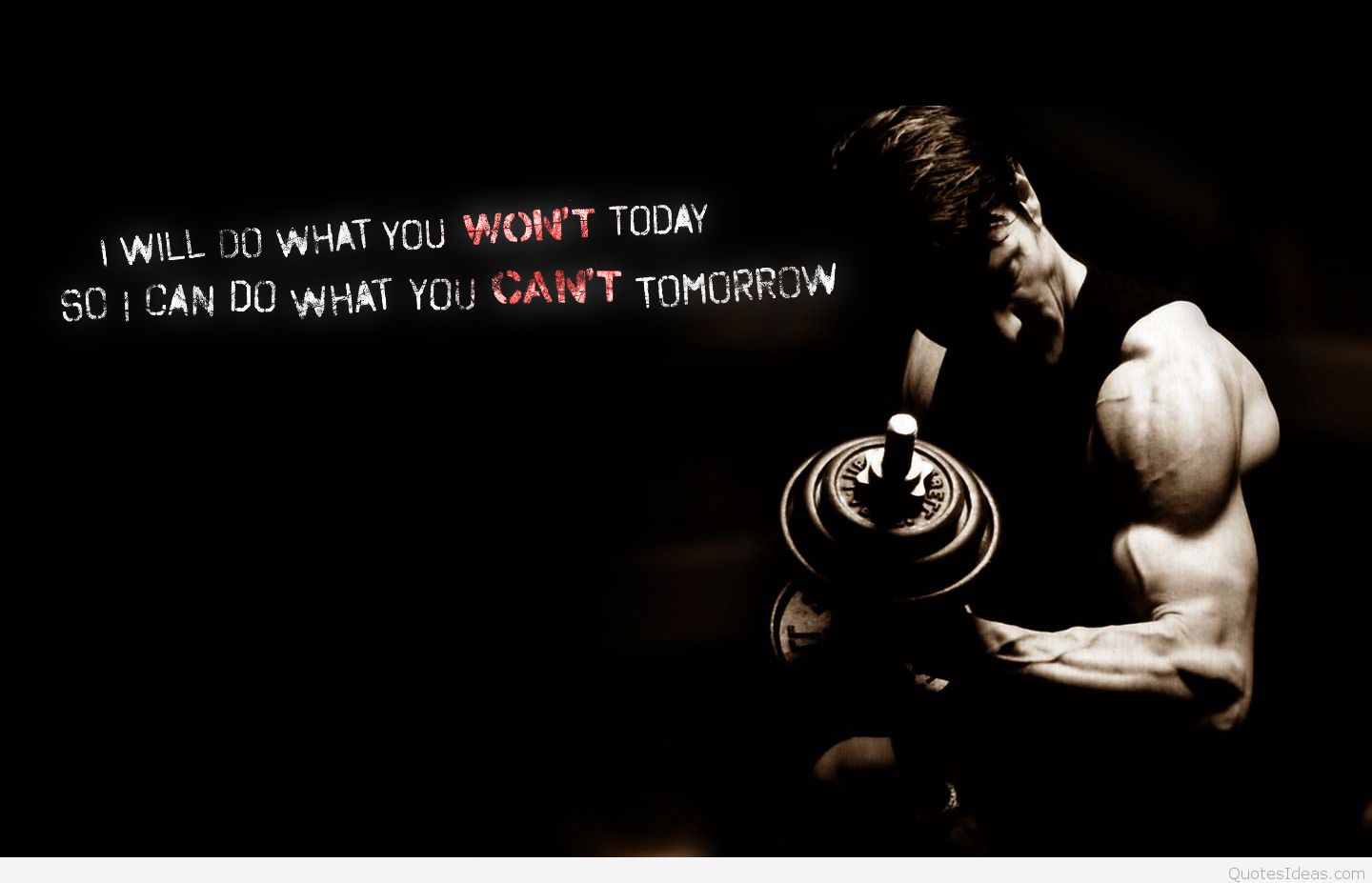 Fitness Wallpaper With Quote Love My Gym Quotes 1440x927 Download Hd Wallpaper Wallpapertip