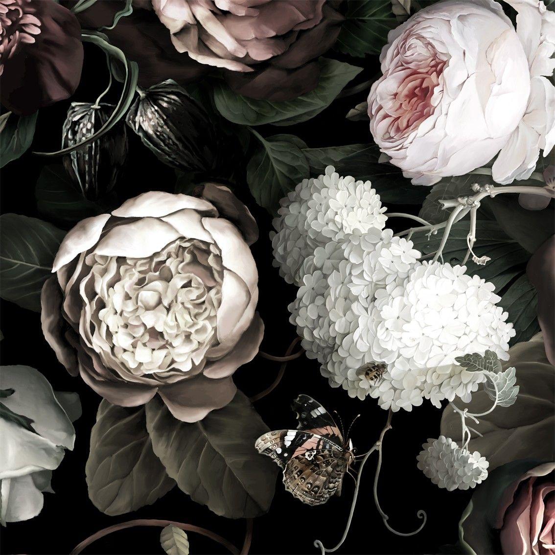 黒花のデスクトップの背景 黒と白の花の壁紙 1134x1134 Wallpapertip