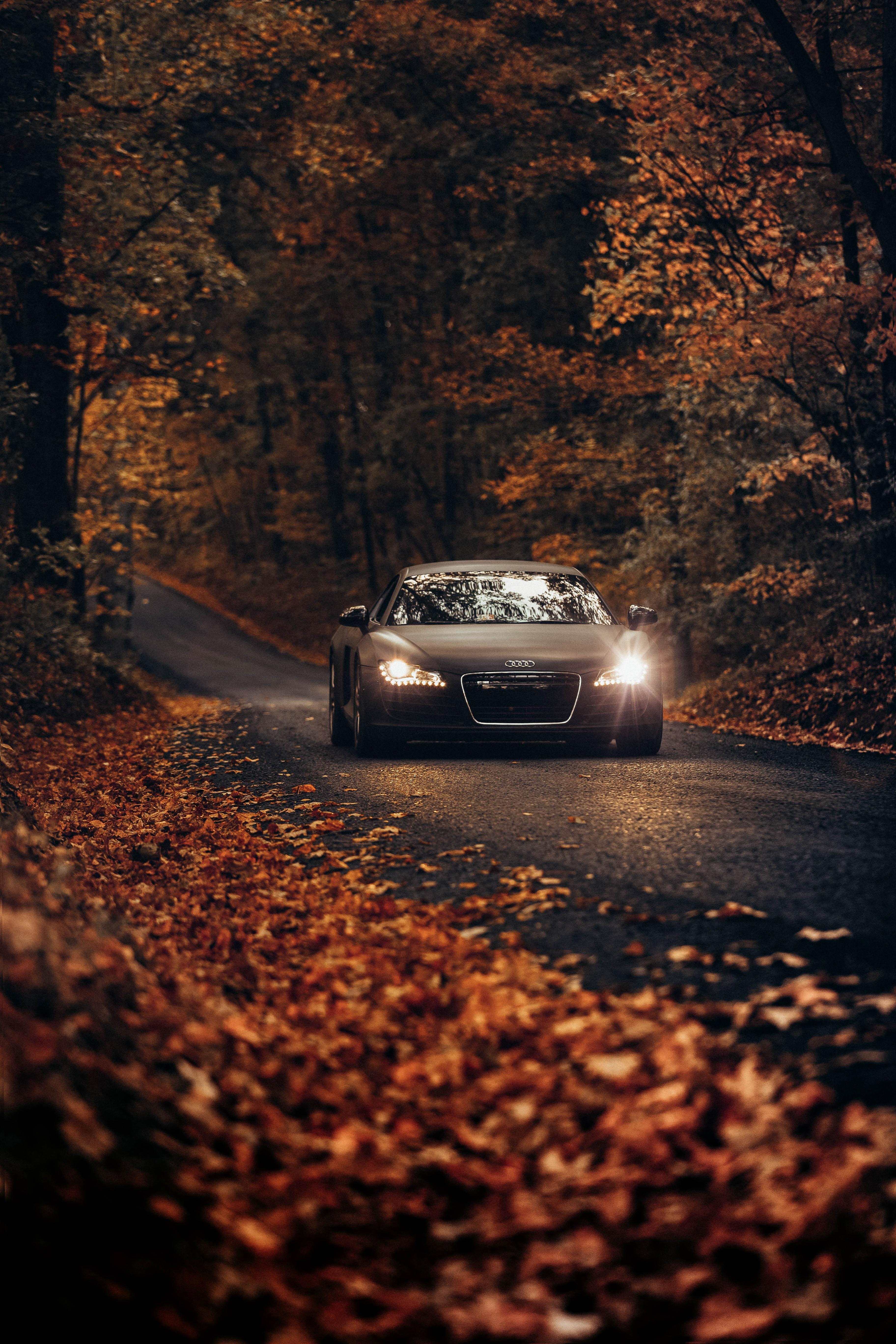 Fond D Ecran Audi Hd Fond D Ecran Telecharger Gratuitement Recherche D Images Hd 3648x5472 Wallpapertip