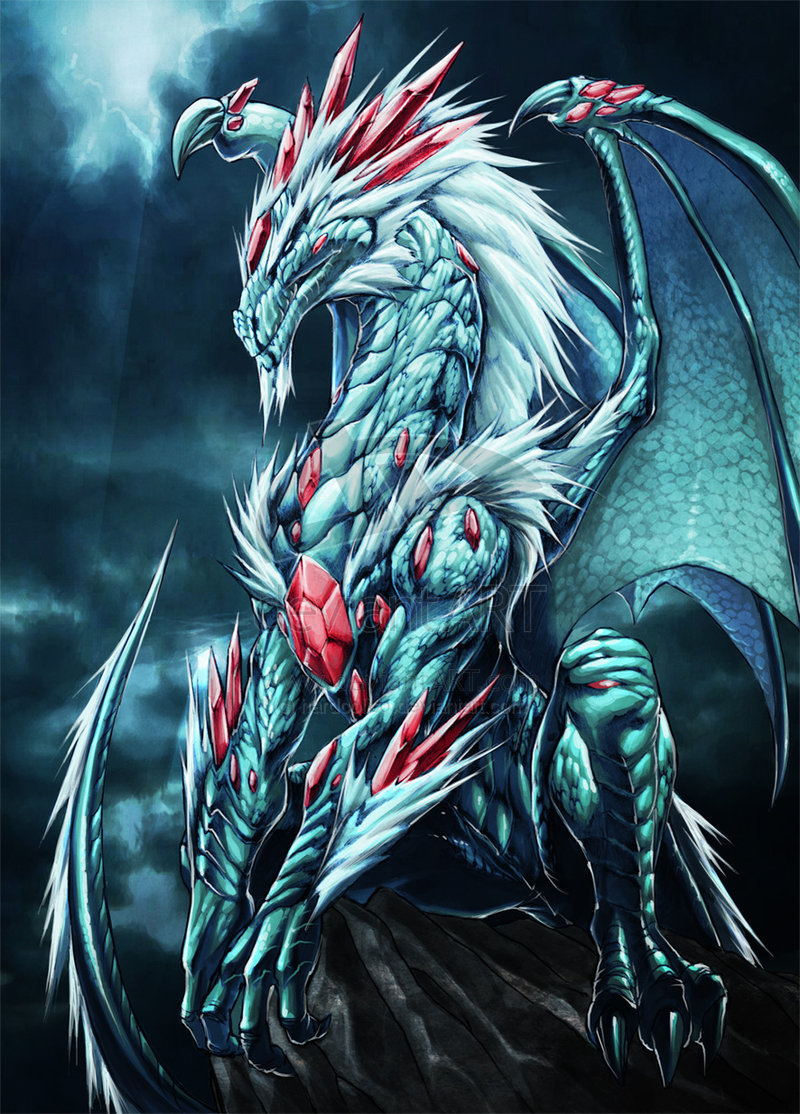 Gambar Gambar Wallpaper Ular Naga Dunia Lengkap Kumpulan Cool Dragons 800x1114 Download Hd Wallpaper Wallpapertip