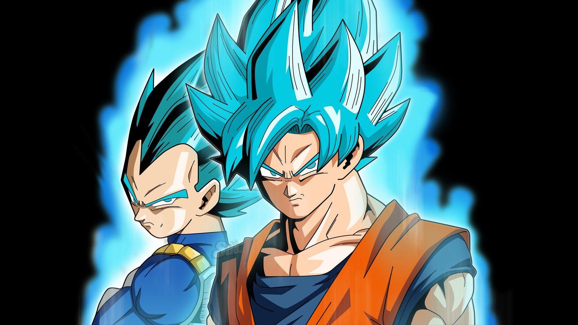 Goku And Vegeta Full Hd Wallpaper And Background Image Dragon Ball Super Goku And Vegeta Blue 1920x1080 Download Hd Wallpaper Wallpapertip