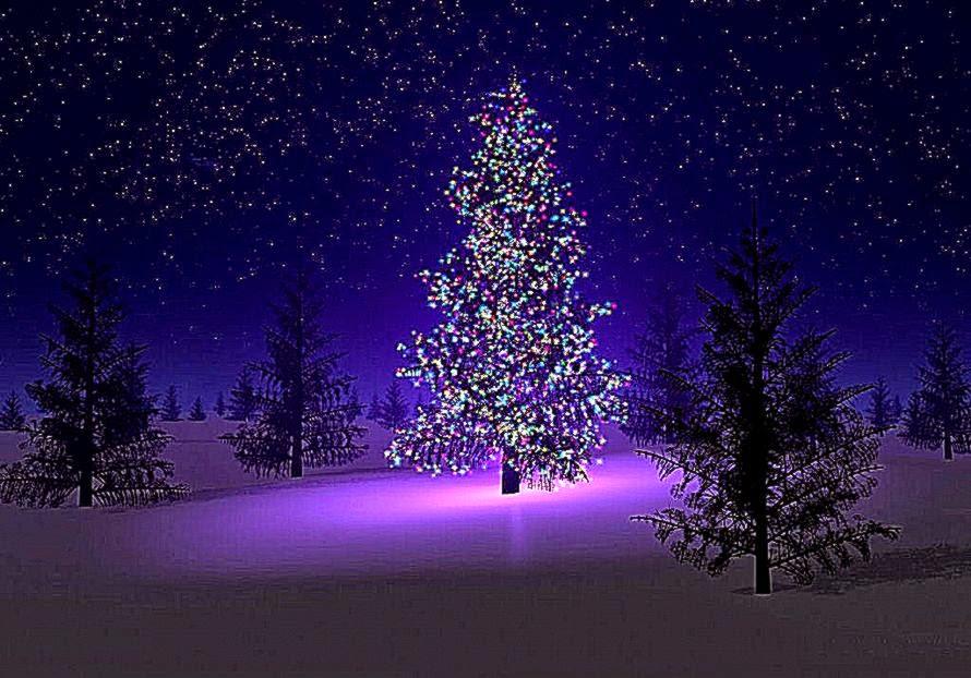 Christmas Tree Desktop Wallpapers Christmas Tree Images Christmas 890x622 Download Hd Wallpaper Wallpapertip