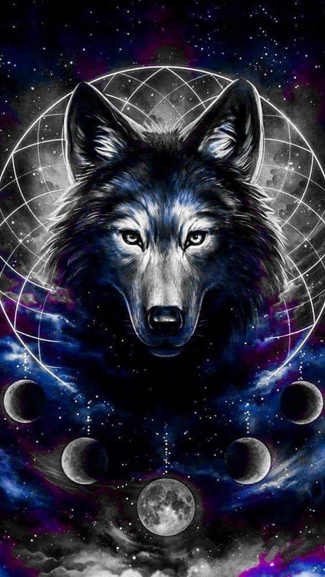 Galaxy Wolf 720x1280 Download Hd Wallpaper Wallpapertip