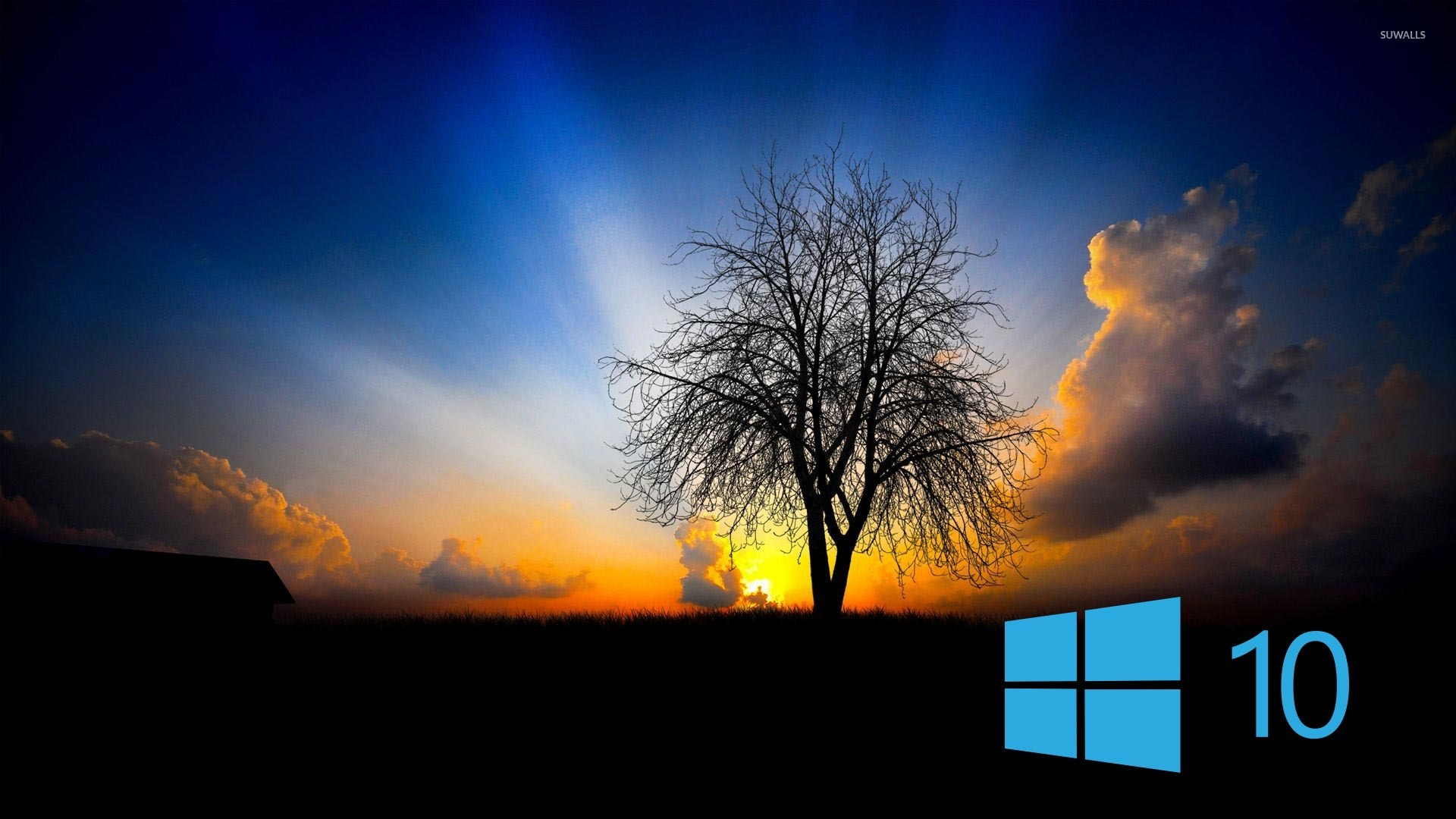 8 83612 laptop windows 10 wallpaper hd