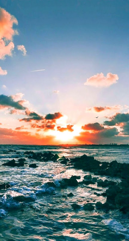 Ocean And Beach Tumblr Blog Photo Aesthetic Pinterest Summer Beach Aesthetic 431x800 Download Hd Wallpaper Wallpapertip