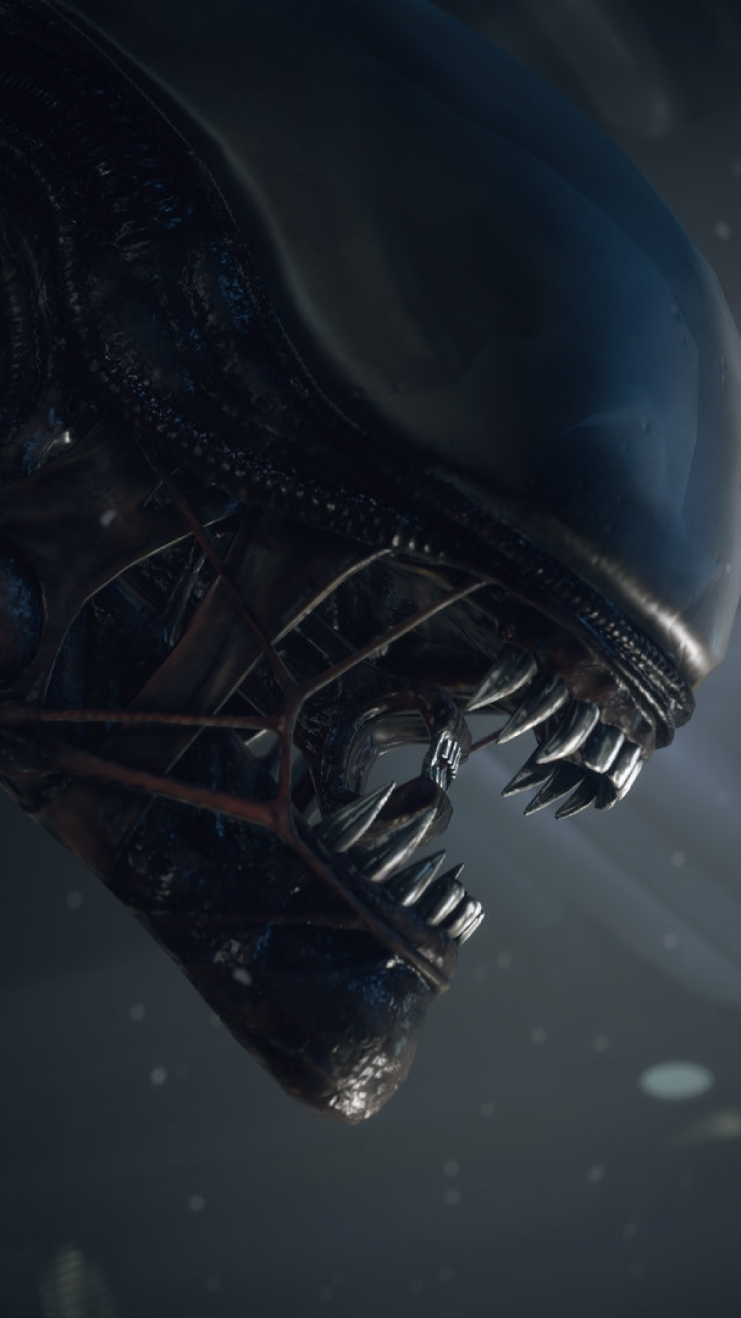 Wallpaper Alien Isolation Pc Playstation 3 Playstation エイリアン 壁紙 Iphone 640x1136 Download Hd Wallpaper Wallpapertip