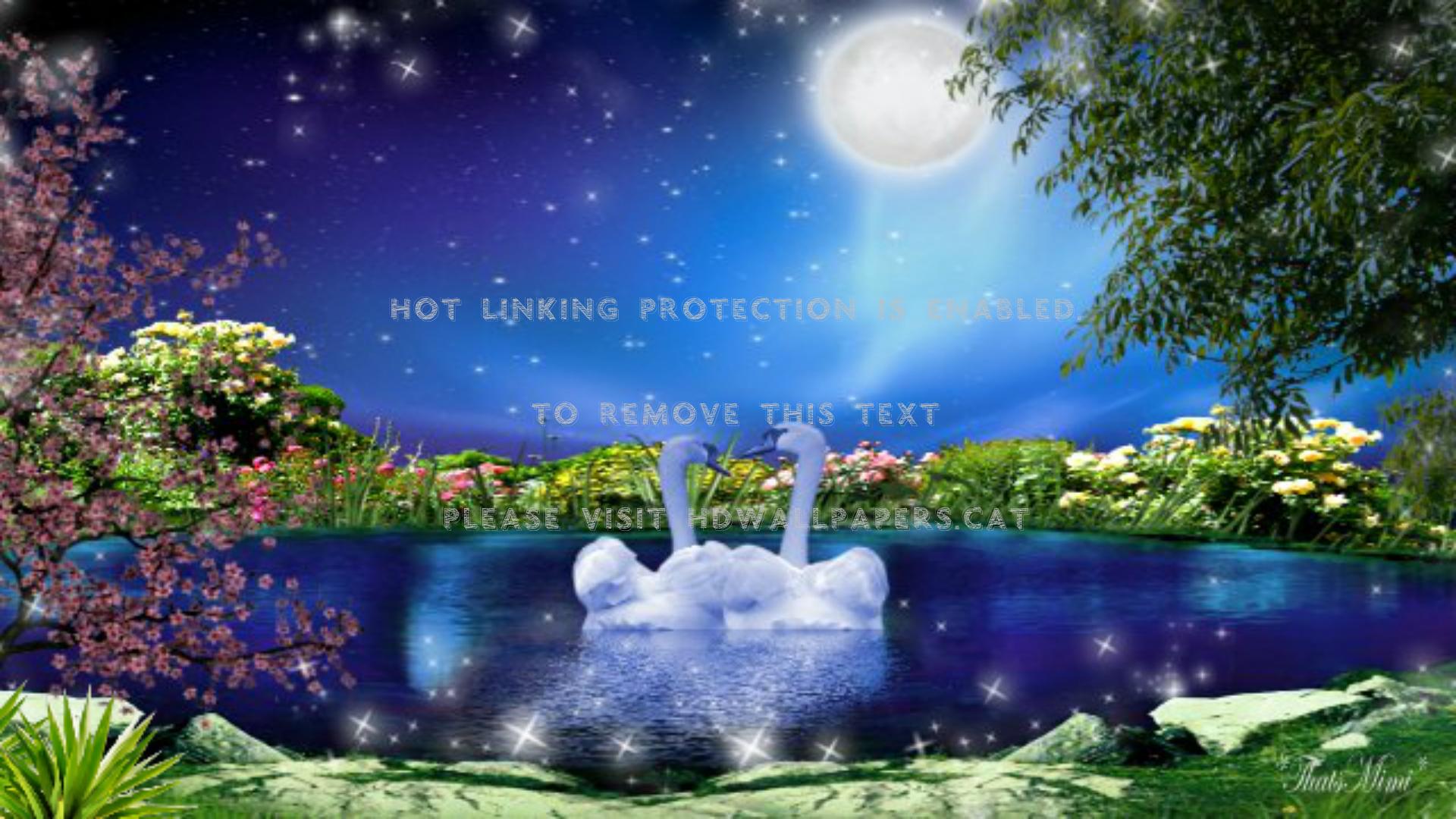 美しいロマンチックな満月 ロマンチックな壁紙フルサイズ 19x1080 Wallpapertip