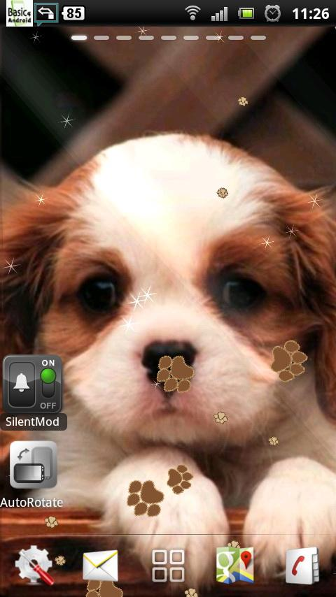 Cute Dogs And Puppies 480x854 Download Hd Wallpaper Wallpapertip