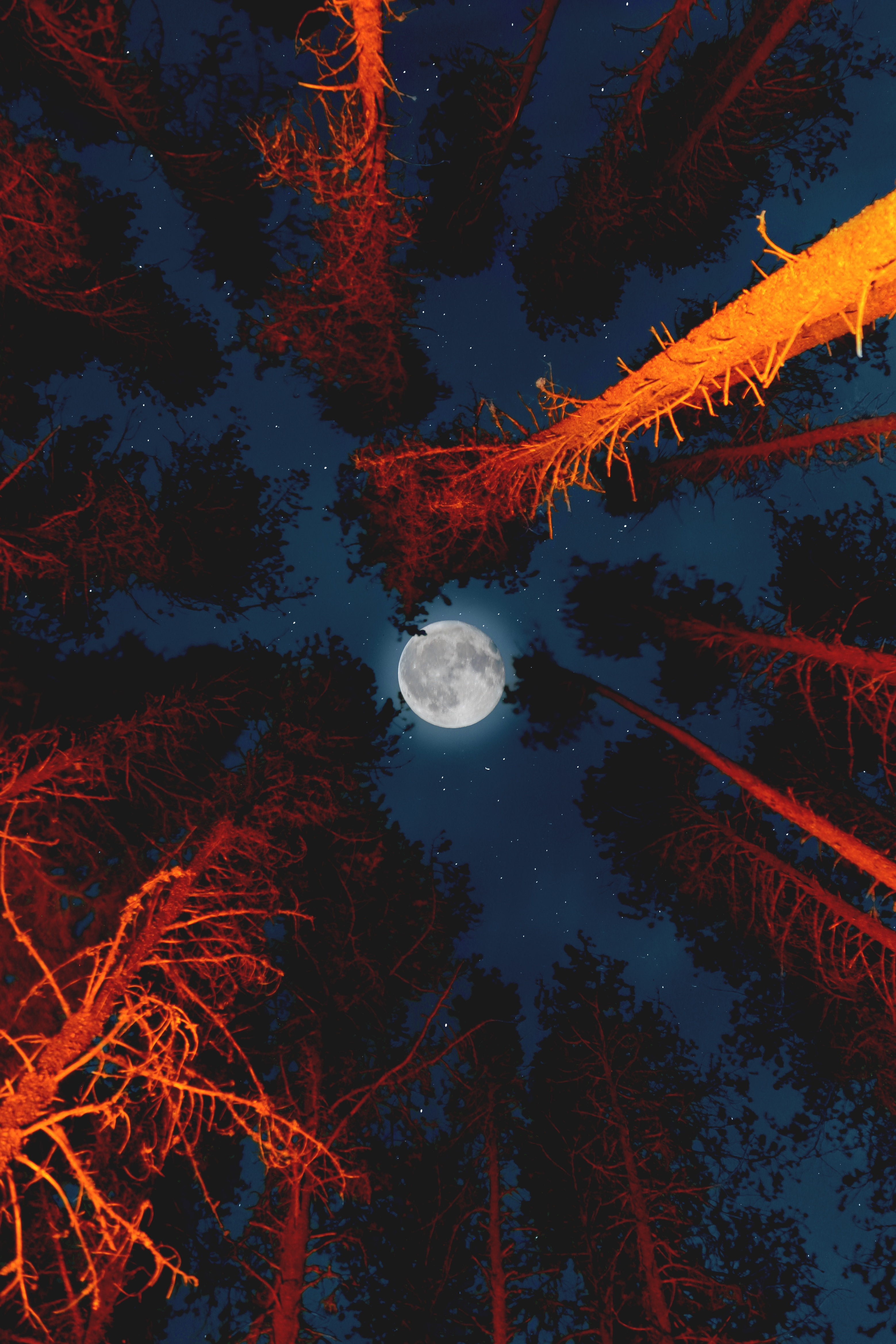 Iphone Wallpaper Aesthetic Moon 3117x4675 Download Hd Wallpaper Wallpapertip