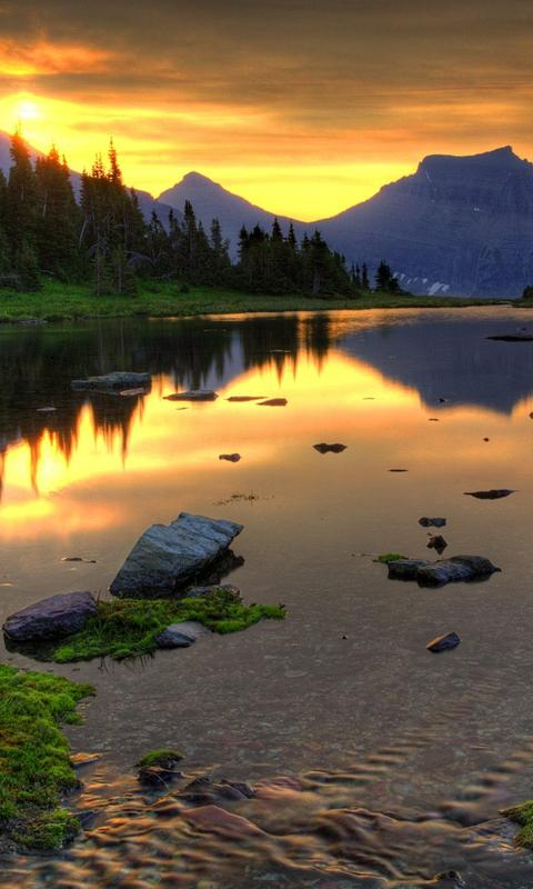 Nature Hd Wallpaper For Android 480x800 Download Hd Wallpaper Wallpapertip
