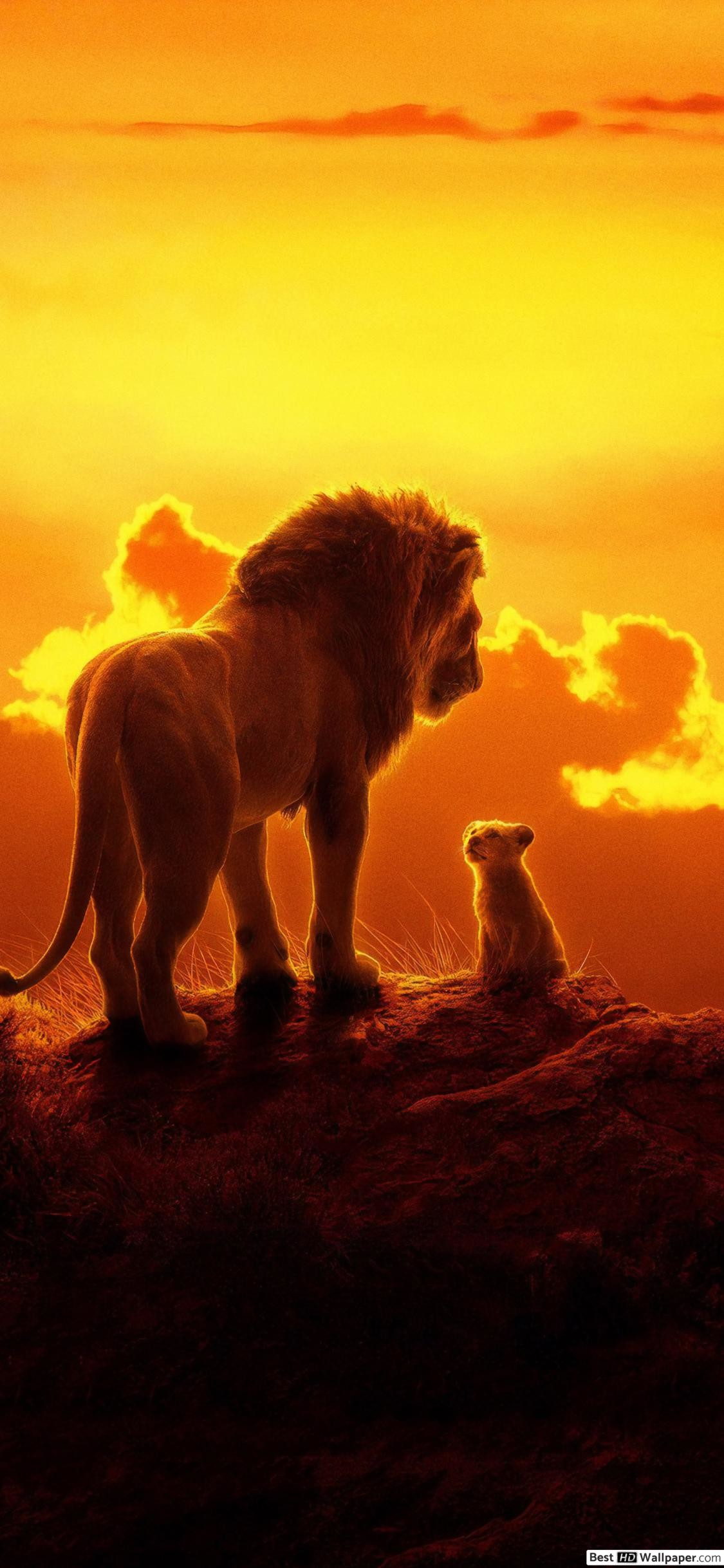 Apple Iphone X Data Src Lion King Iphone Wallpaper Ultra Hd Lion Wallpapers Hd 1125x2436 Download Hd Wallpaper Wallpapertip