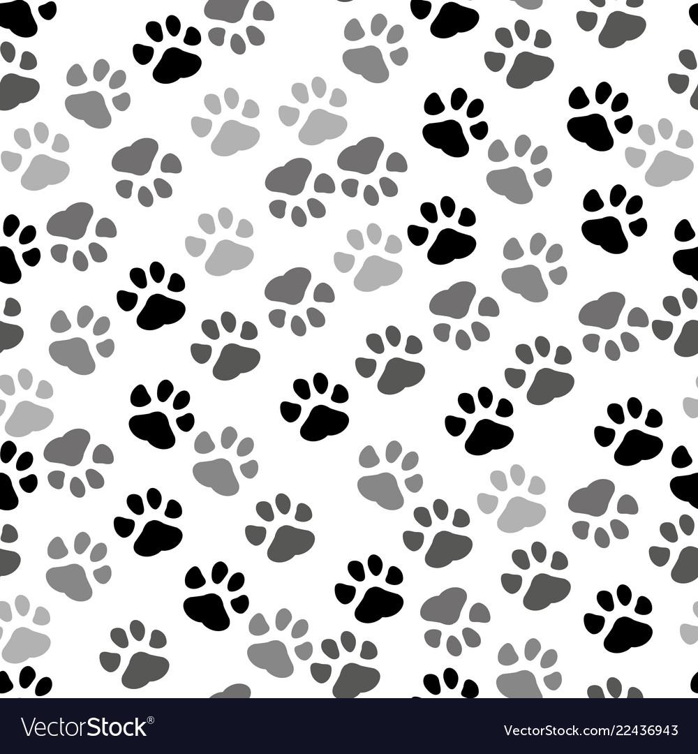 Pet Paw Print And Bone Puppy Paw Print Background 1000x1080 Download Hd Wallpaper Wallpapertip