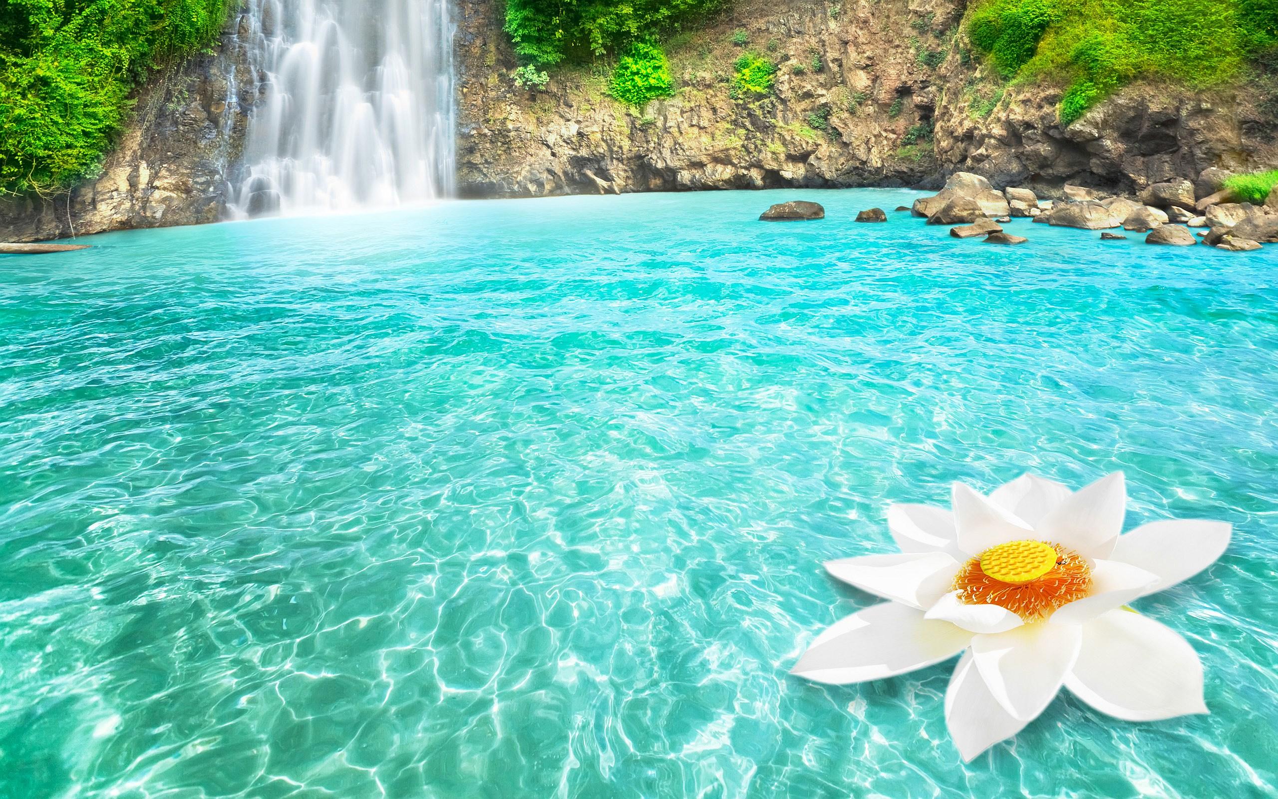 Beautiful Waterfall 2560x1600 Download Hd Wallpaper Wallpapertip
