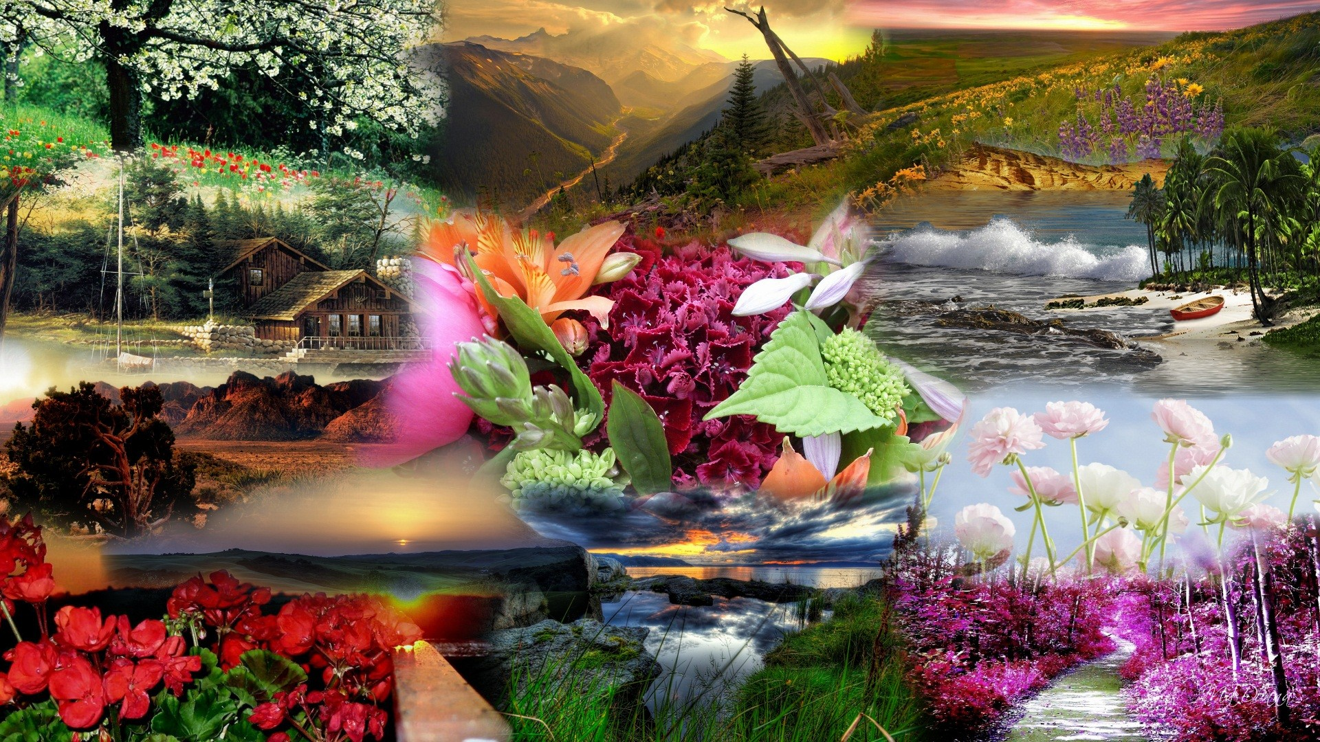 Nature Beautiful Wallpaper Background 1920x1080 Download Hd Wallpaper Wallpapertip