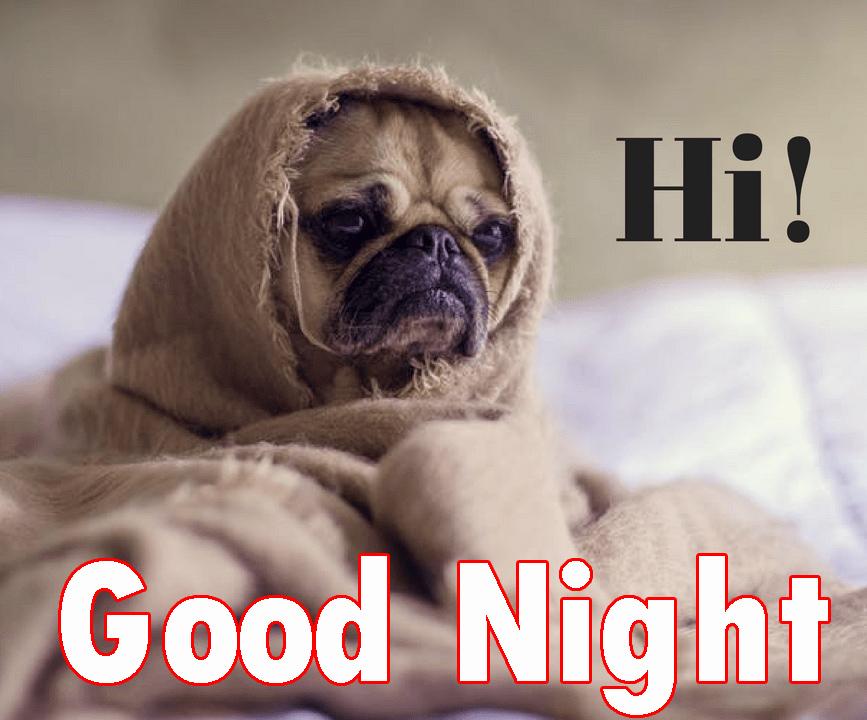 Nacht witzige gute Witzige gute