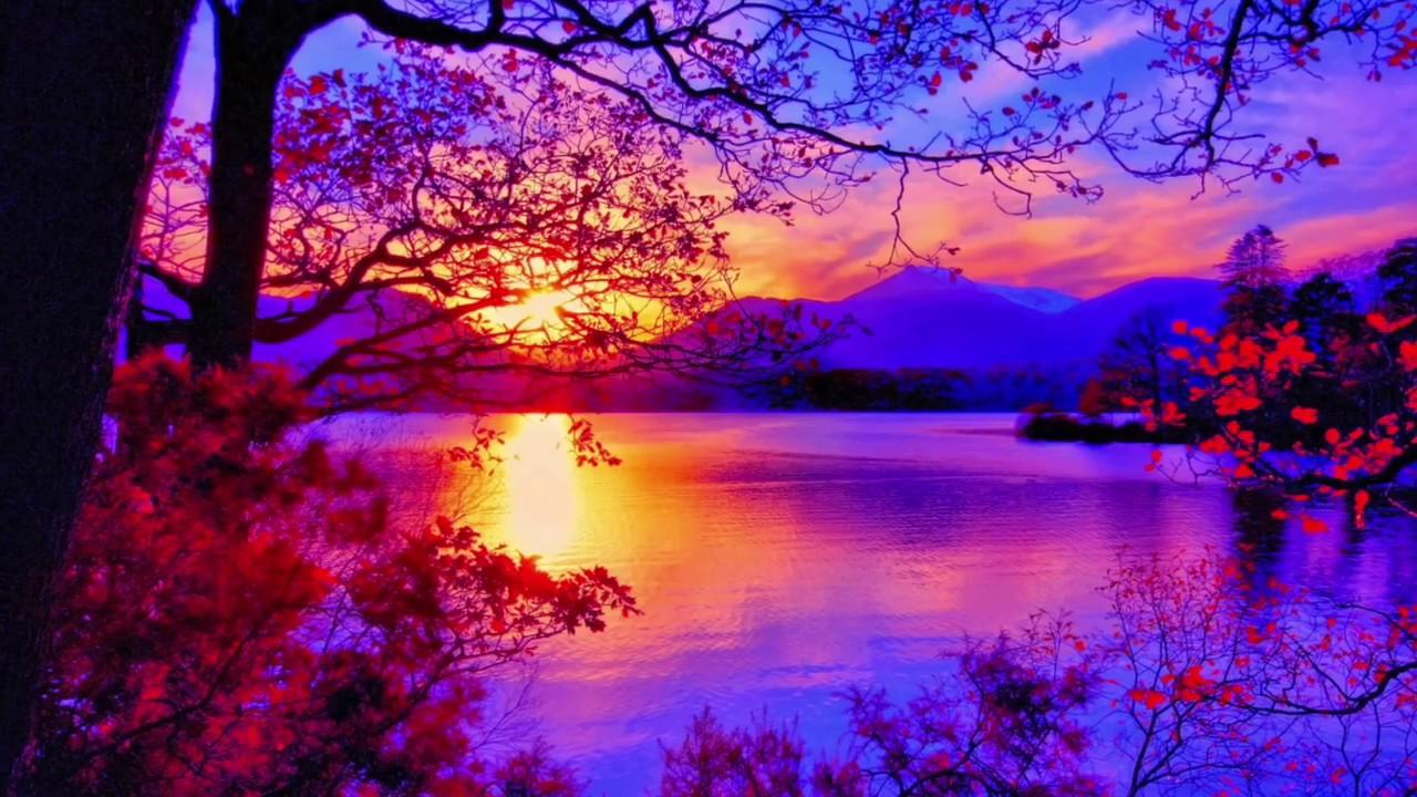 bellissimo paesaggio - sfondi bellissimi scenari - 1280x720 - WallpaperTip