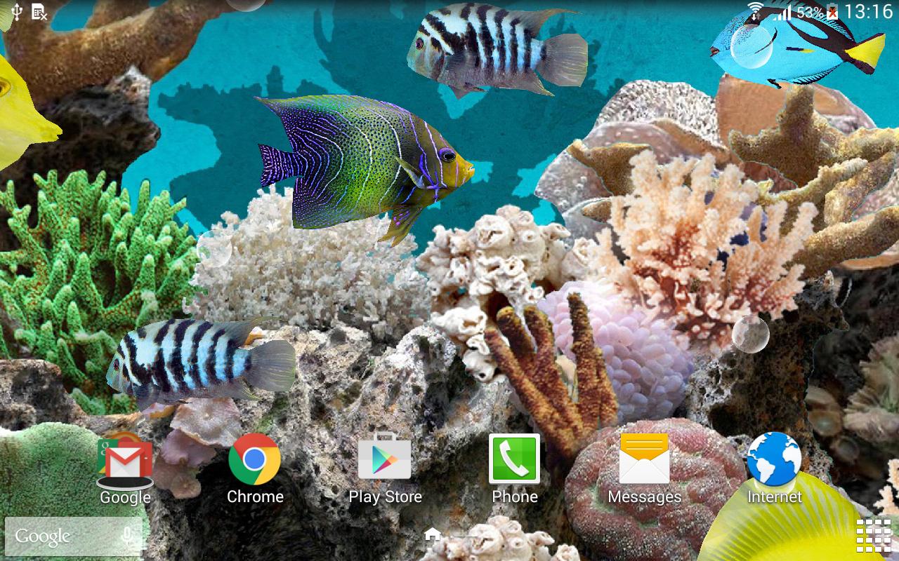 マリンアクアリウム 3d魚ライブ壁紙 1280x800 Wallpapertip