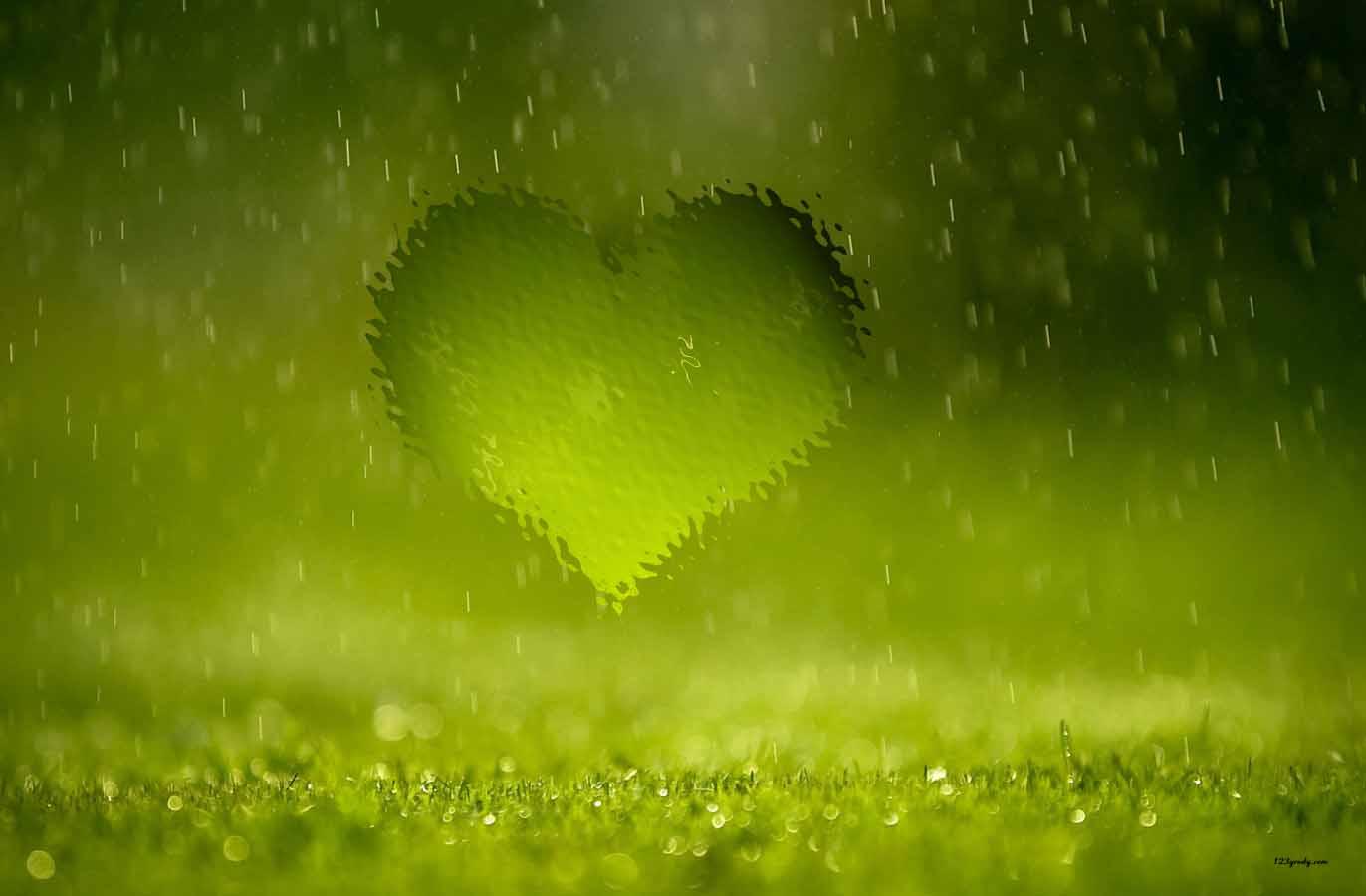 выставочный дождь сердечек картинки изготовлены вручную поршней