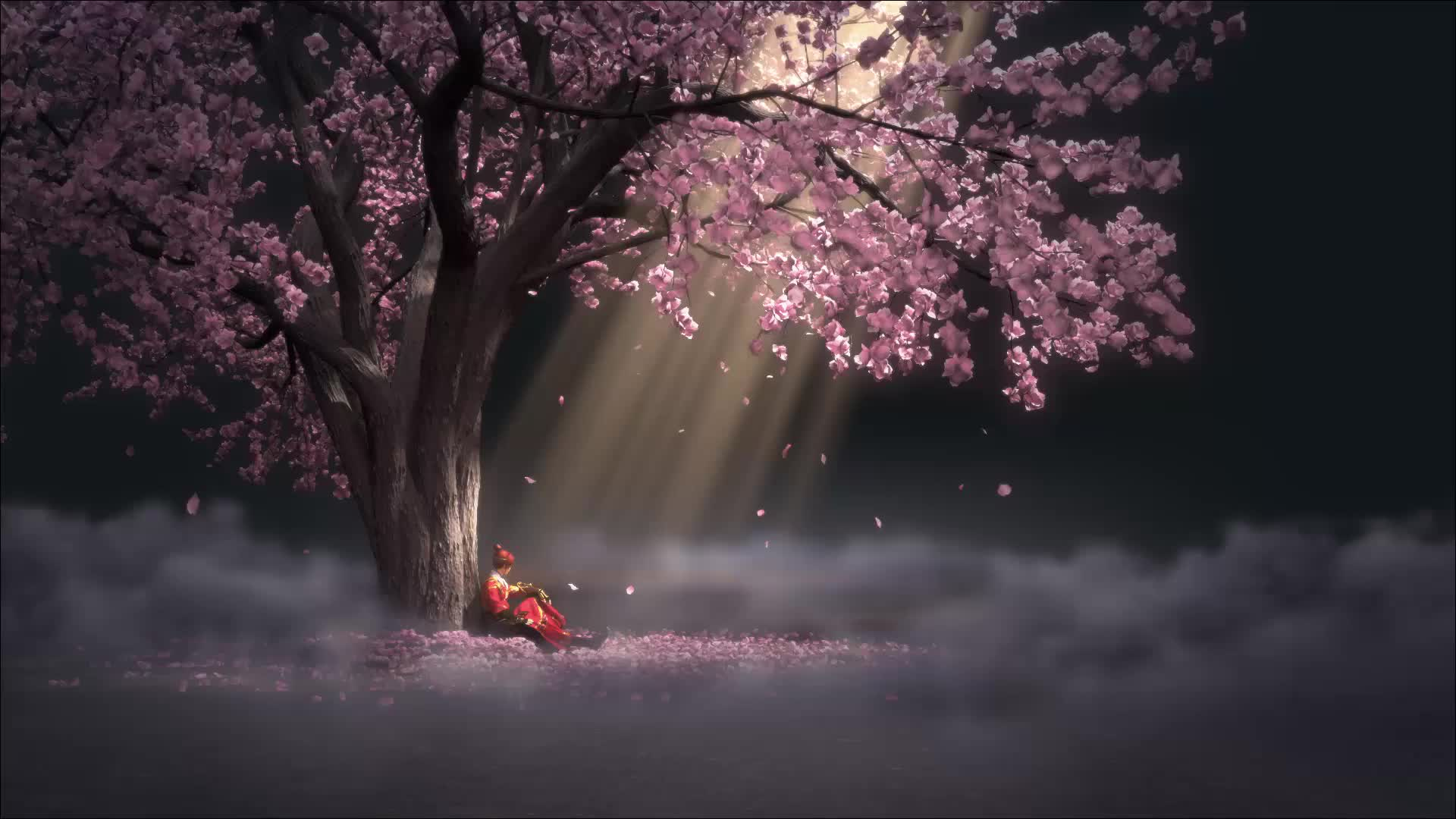 Sakura Tree Wallpaper Hd 1920x1080 Download Hd Wallpaper Wallpapertip