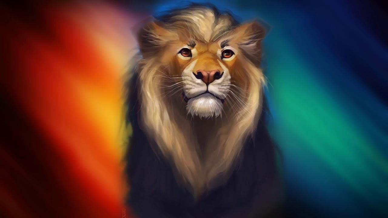 Lion Full Screen Hd 1280x720 Download Hd Wallpaper Wallpapertip