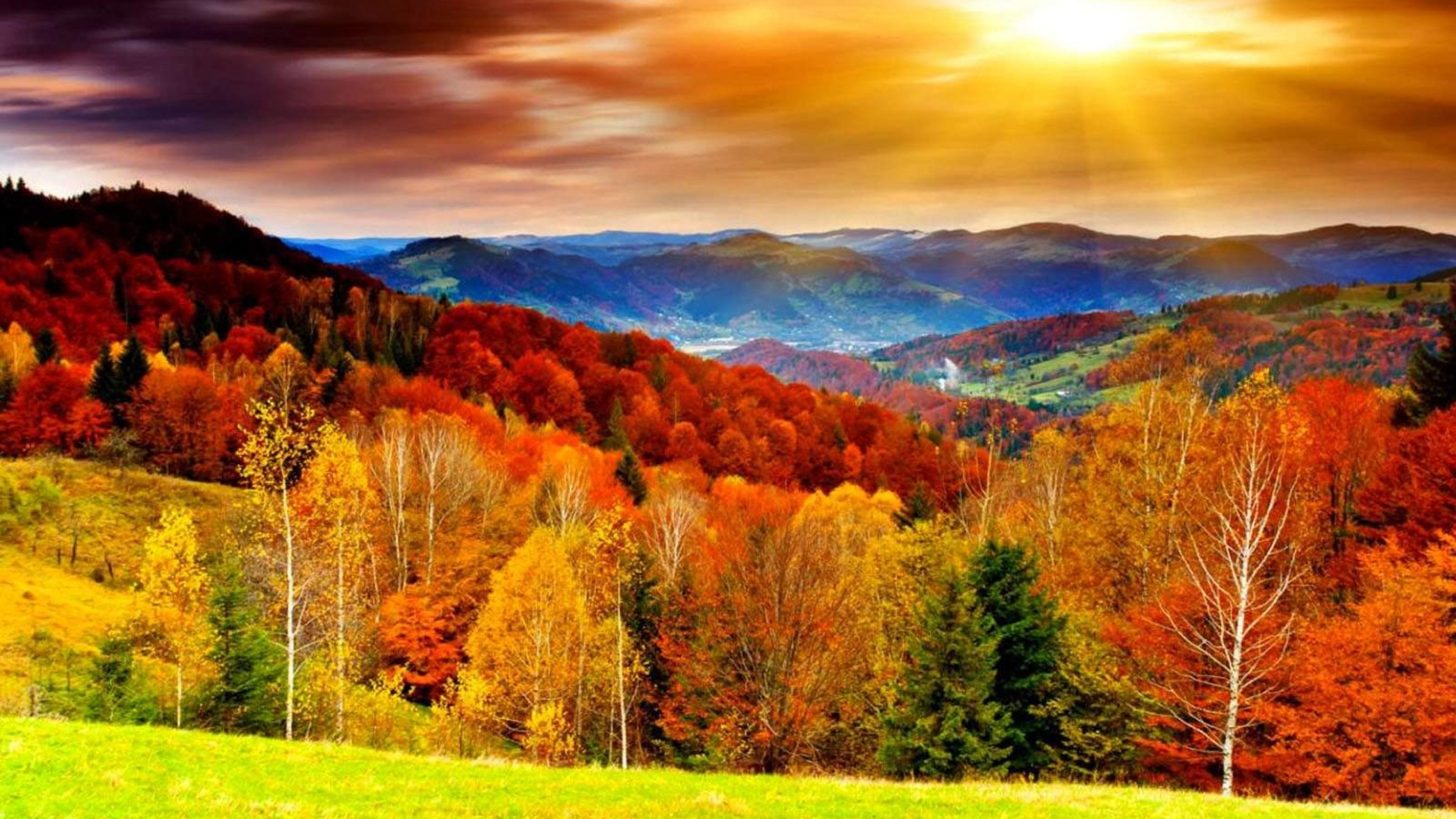 Free Autumn Desktop Wallpaper Src Download Free Autumn 3840x2160 Download Hd Wallpaper Wallpapertip