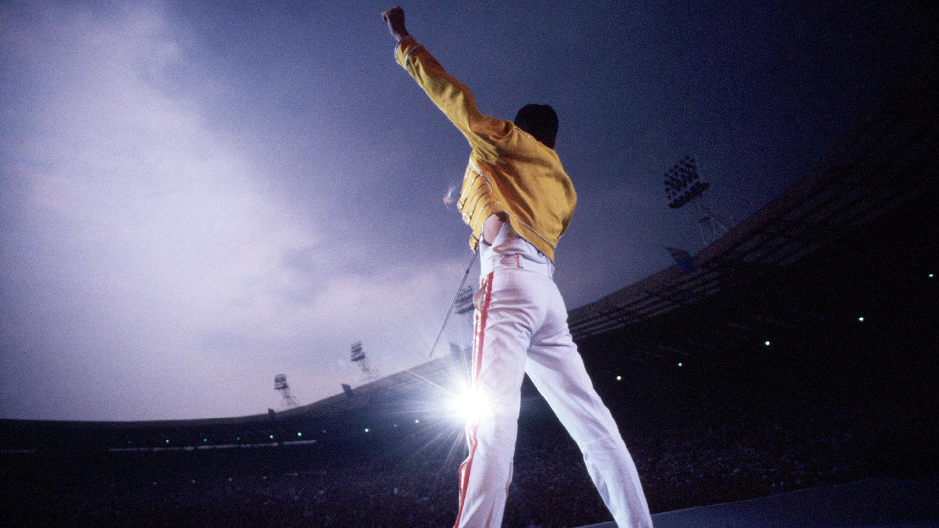 Freddie Mercury Wallpaper 1920x1080 Download Hd Wallpaper Wallpapertip