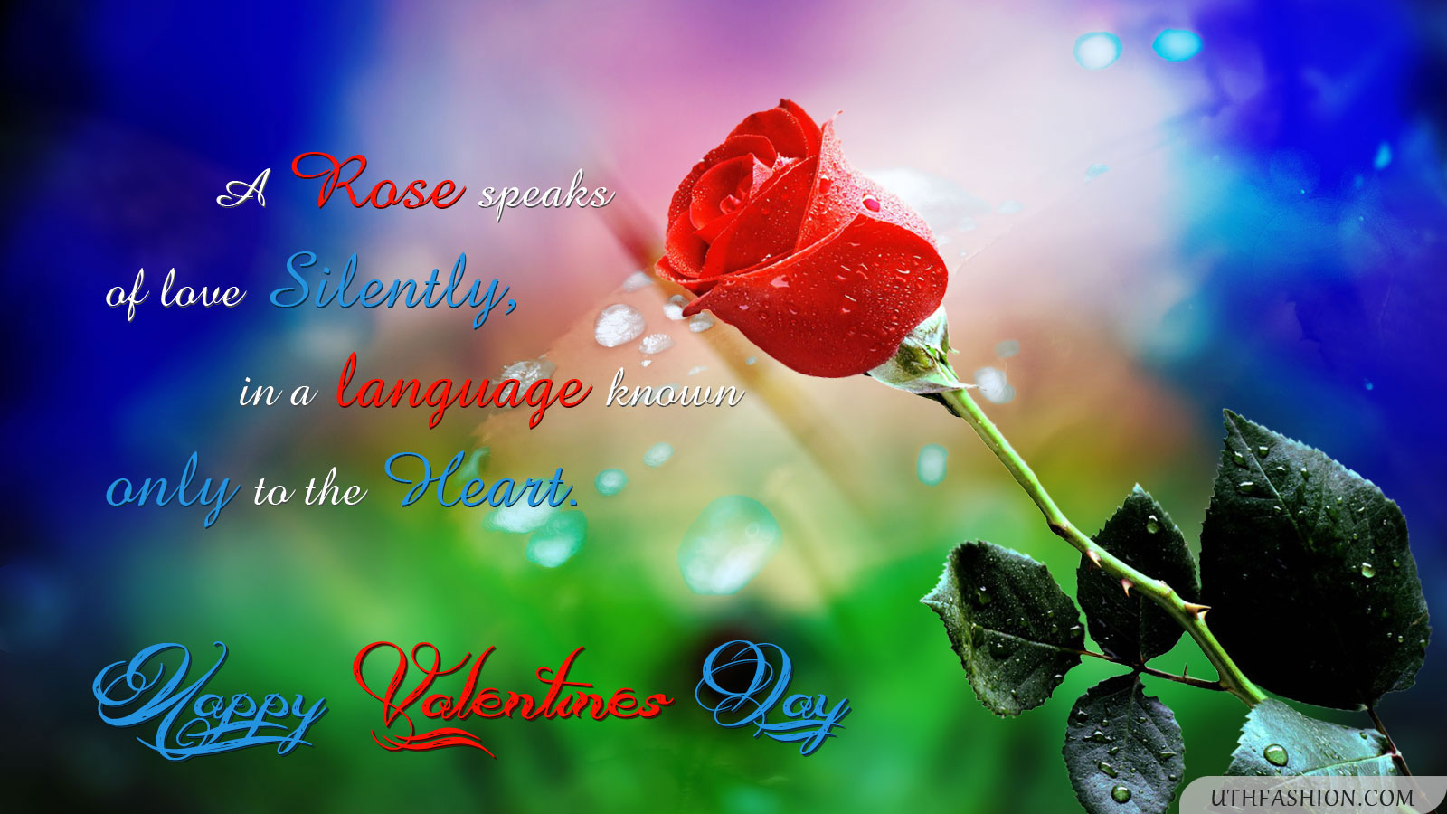 Love Rose Wallpaper Free Download ...
