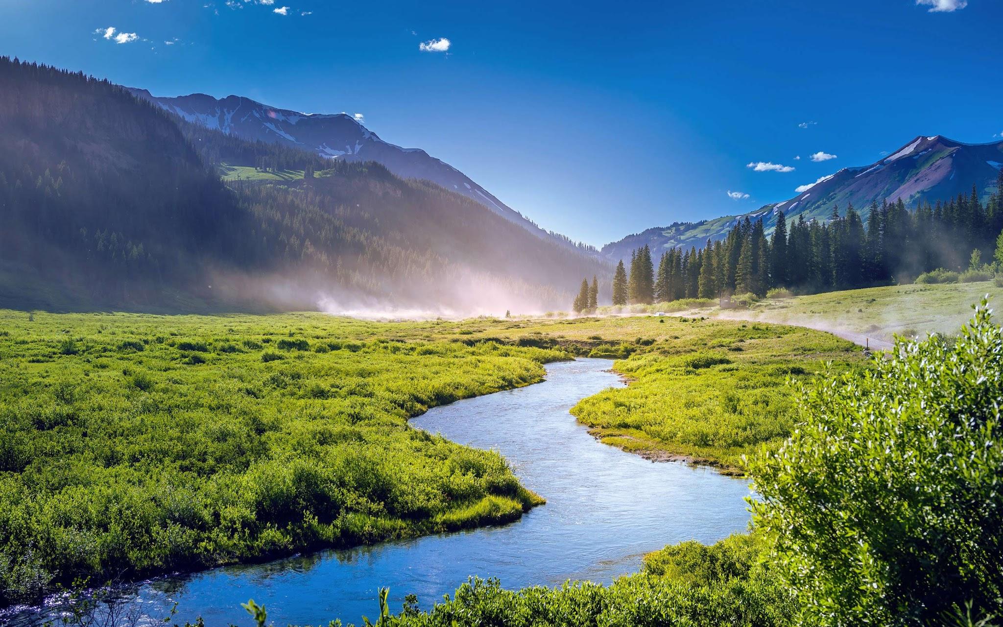1440p Nature