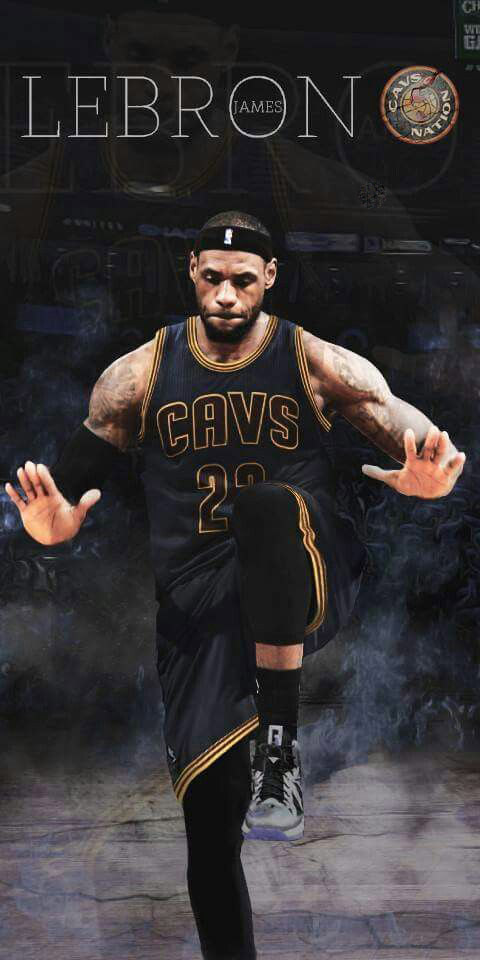 Lebron James Hd For Android And Iphone Lebron Wallpaper Iphone 7 480x960 Download Hd Wallpaper Wallpapertip