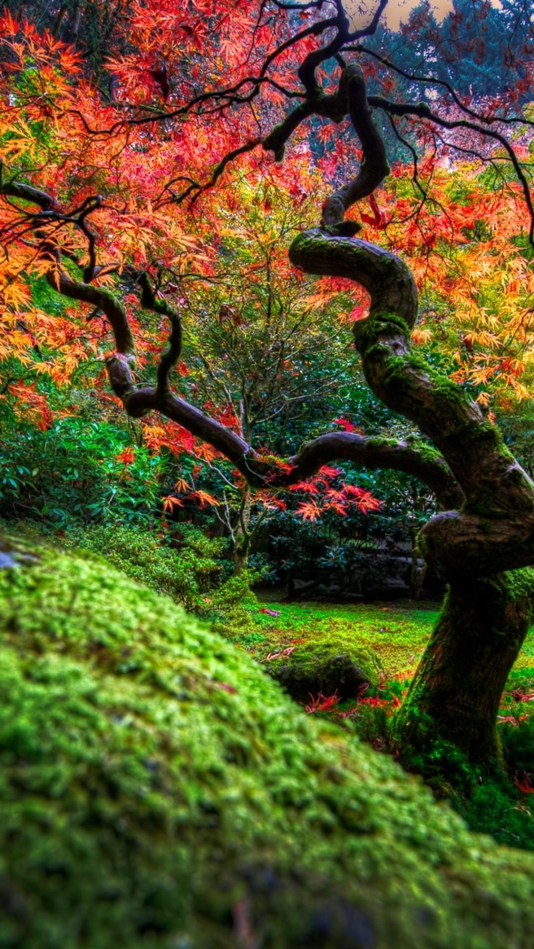 Japanese Garden, Tree, Flowers, Grass ...