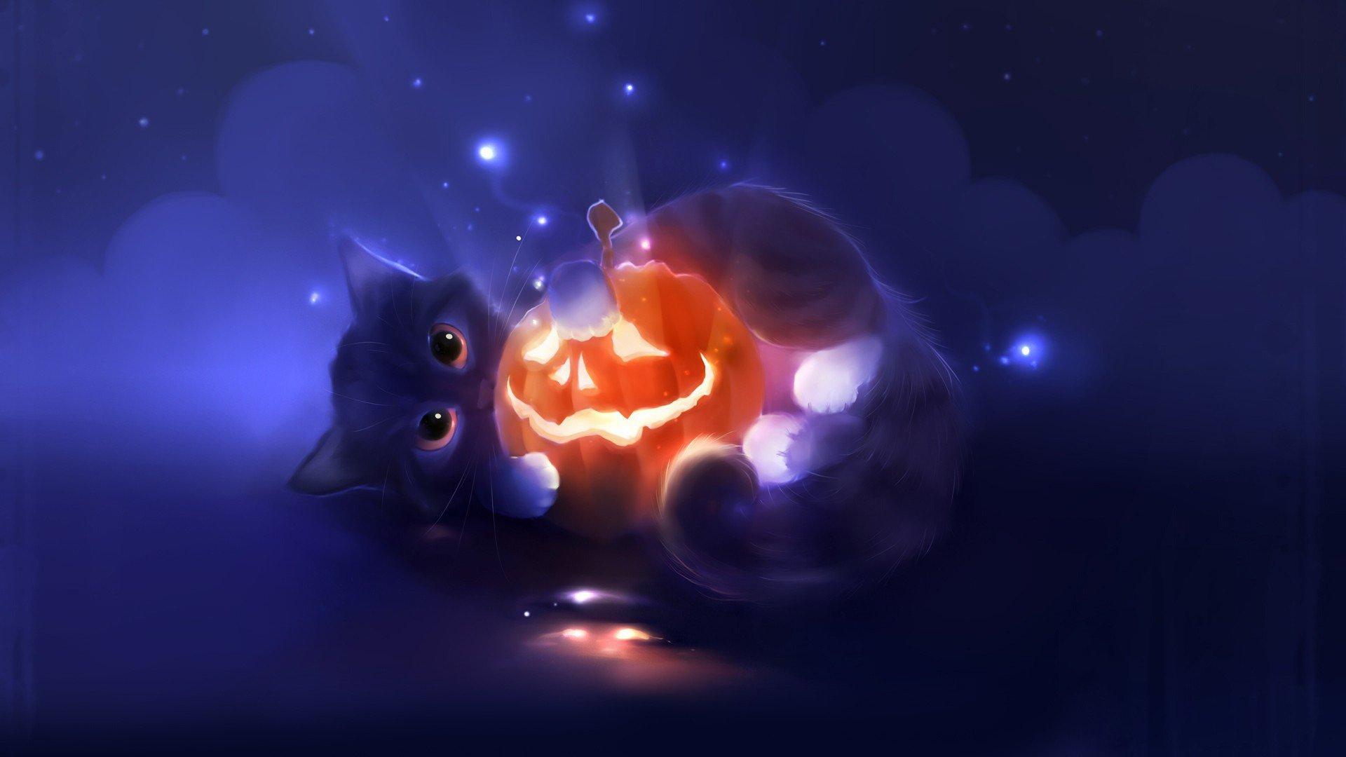 Cat Halloween Background Cute 1920x1080 Download Hd Wallpaper Wallpapertip