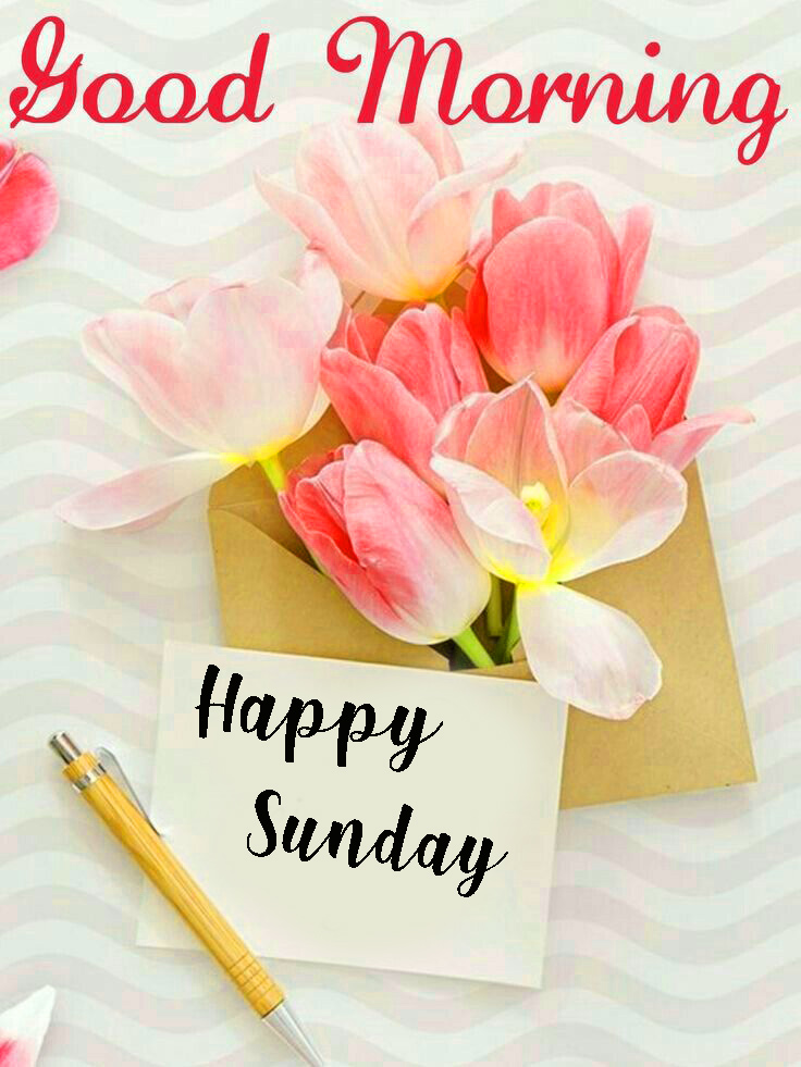 Good Morning Images With Sunday - 736x981 - Download HD Wallpaper - WallpaperTip